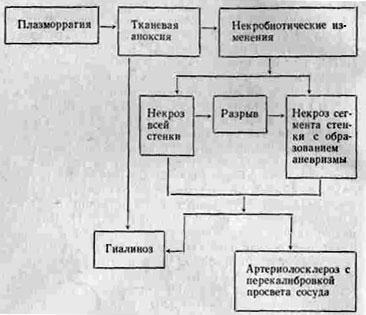 Книга: М. С. Кушаковский. Гипертоническая болезнь