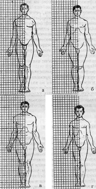 Классификация типов телосложения по Sigaud