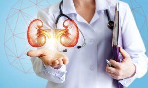 Достижения немецких врачей в лечении мочекаменной болезни